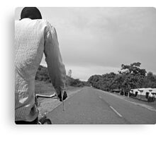 Catching pedals Canvas Print