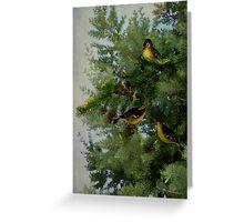 Birds In My Tamarack Tree Greeting Card
