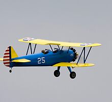 Model Bi-Plane Close Up - LDMFA by Nick Sage