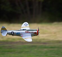 Model P-47D Thunderbolt - LDMFA by Nick Sage
