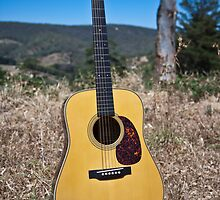 Martin D28 Marquis by Paul Thompson