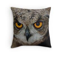 Eagle Owl Chick Throw Pillow