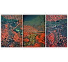 Wet Rock Detail (Triptych) Photographic Print