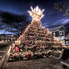Provincetown Lobster Trap Christmas Tree by capecodart
