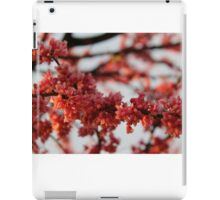 Blossoms in Spring iPad Case/Skin