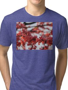 Blossoms in Spring Tri-blend T-Shirt