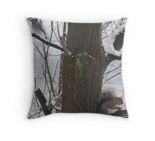 Squirrel and Blue Jay Throw Pillow