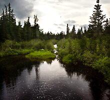 Little Spencer Pond by nolenphotograph