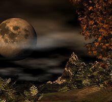 A Latter Moon by David  Humphrey