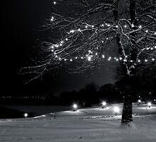 A Quiet Night in December by Johanne Brunet