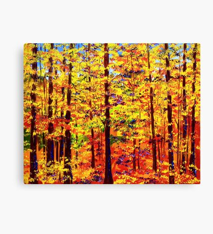 The Yellow Maple Glow Canvas Print