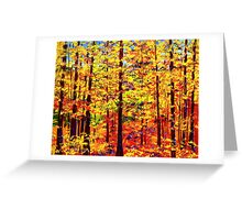 The Yellow Maple Glow Greeting Card