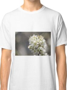 Plum Tree Blossoms Classic T-Shirt