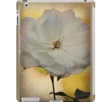 Fragile Beauty iPad Case/Skin