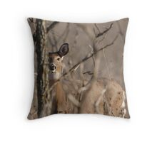 Shy-Doe Throw Pillow