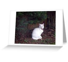 Casper in the garden Greeting Card