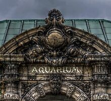 Belle Isle Aquarium by ericthom57