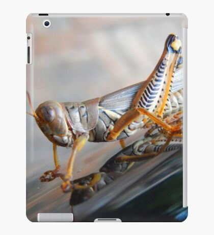 The Colors of A Grasshopper iPad Case/Skin