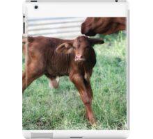 New baby iPad Case/Skin