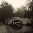 Old Bridge by Lisa Williams
