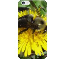 Big Bumble iPhone Case/Skin