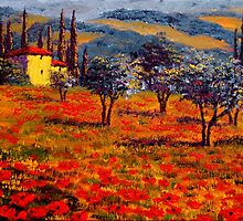 Tuscany Spring Olive Grove Vista by sesillie