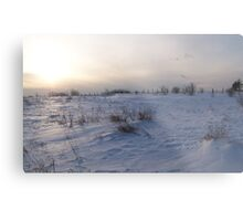 A Winter Snow Scene in Maine Metal Print