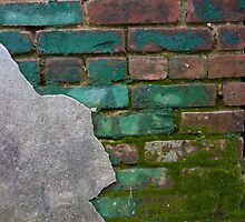 Another brick in the wall by DariaGrippo