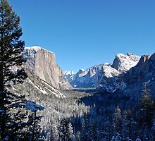 Famed El Capitan by Dannah Johnston