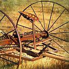 Rusty Rake Past Time by kayzsqrlz