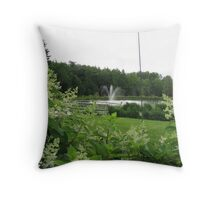 Fountain - Richards Trout Pond, Maine Throw Pillow