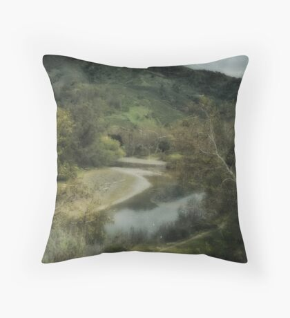 We'd Have It All Throw Pillow