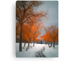 The Colours of Winter Canvas Print