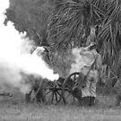 Southern artillary BW by Larry  Grayam