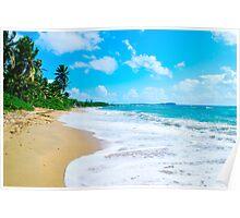 Beach | Vieques | PR Poster