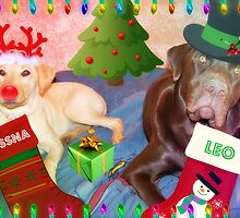 Cessna and Leo all ready for Christmas by Jen Peters