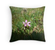 Be Bold and Never hide who you are Throw Pillow