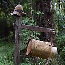 Mr Mail Box - Northern Rivers NSW by CasPhotography