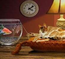 Cat fishing by Ann Nightingale