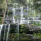Russell Falls, My Field NP, Tasmania by Odille Esmonde-Morgan