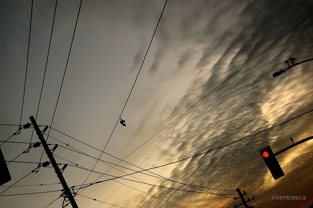 Telephones Wires by cventresca
