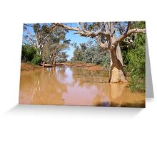 outback river- NSW, Australia Greeting Card