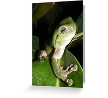 Shades of Green Greeting Card