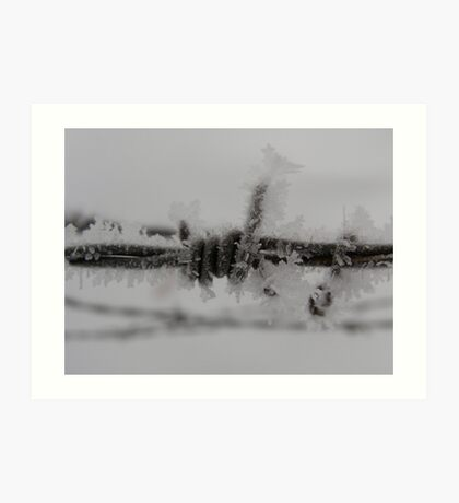 Barbed Wire Frosted Art Print