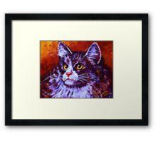 Longhair Cat Framed Print