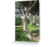 Living Parchment Greeting Card
