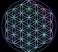 Flower of Life - Blue to Pink by haymelter