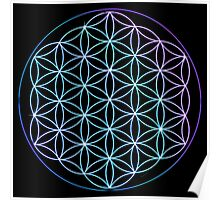 Flower of Life - Blue to Pink Poster