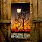 Full Moon Barn Door by sostroff