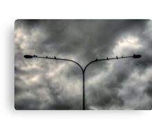 Birds on a ......Light Pole! Canvas Print